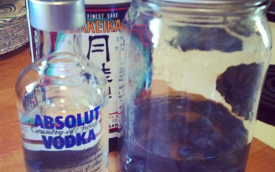 Misadventures in Sake Infusion, Part II: Blueberries