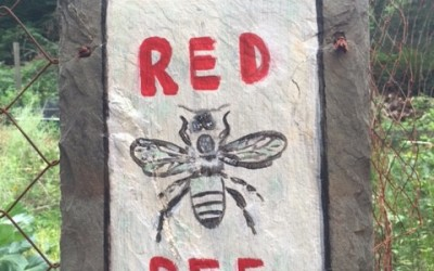#BeeTheScene: A Visit to Red Bee Honey