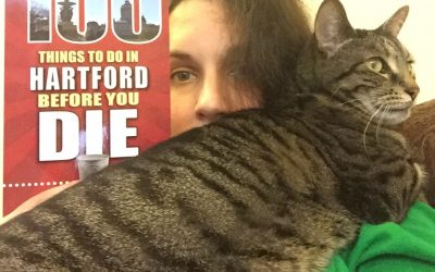 Cat Lady Book Reviews: 100 Things to Do in Hartford Before You Die