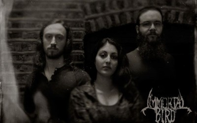 Interview with Rae Amitay of Immortal Bird