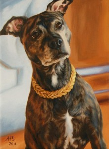 One of Annalisa's beautiful pet portraits, borrowed from her Facebook portfolio.